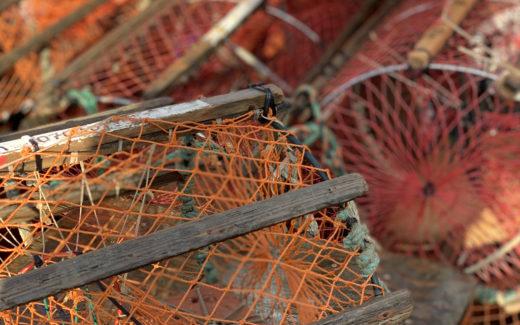 Insamling av fiskredskap på Malmön